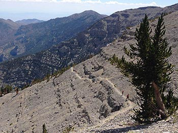 Mount Charleston Switchbacks